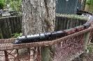 Train Garden - City Park - 4-28-2012 002