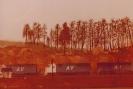 CCMRC Layout 1980-3 001